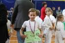 Осенний турнир-открытие соревновательного сезона школы боевых искусств TOITSU RYU_3