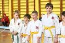 Осенний турнир-открытие соревновательного сезона школы боевых искусств TOITSU RYU_4